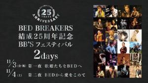 BED BREAKERS